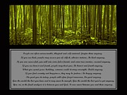 Mother Teresa Framed Prints - Do It Anyway Bamboo Forest Framed Print by David Dehner