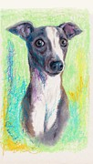 Hound Pastels Framed Prints - Do you get excited easily? Yes I do. Framed Print by Tamaki Hamano