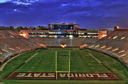 Florida State Metal Prints - Doak Campbell Stadium Metal Print by Alex Owen
