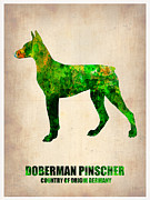 Doberman Framed Prints - Doberman Pinscher Poster Framed Print by Irina  March