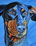 Doberman Paintings - Doberman by Shirl Theis