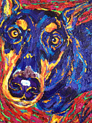 Doberman Pinscher Paintings - Dobey by Keri Costello