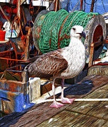 Netting Prints - Dock Print by Carol Sutherland