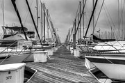 Wooden Platform Metal Prints - Dock Life Metal Print by Heidi Smith