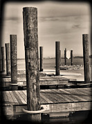 Print On Acrylic Photo Framed Prints - Dock Posts On The Potomac Framed Print by Steven Ainsworth