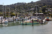 Boats In The Harbor Prints - Docks at Sausalito California 5D22697 Print by Wingsdomain Art and Photography