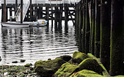 Stepping Stones Photo Prints - Dockside 2 Print by JC Findley