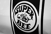 Dodge Super Bee Emblem Prints - Dodge Super Bee Decal Black and White Picture Print by Paul Velgos