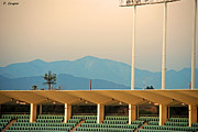 Dodger Stadium Prints - Dodger Mountain Print by Pete Casper