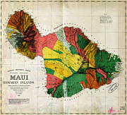 Old Map Paintings - Dodges map of Maui Hawaii 1885 by MotionAge Art and Design - Ahmet Asar