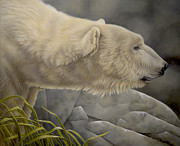 Alaskan Paintings - Dodici by Laura Regan