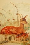 Wild Animals Paintings - Doe and Fawn deer by Lynn Beazley Blair