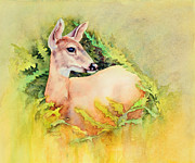 Ferns Paintings - Doe in Ferns by Bonnie Rinier