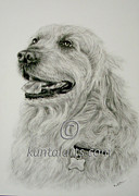 Kuntal Chaudhuri - Dog 1