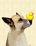 Dog Framed Prints Digital Art Framed Prints - Dog and Duck Framed Print by Kelly McLaughlan