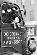 Winston Vargas - Dog And Truck In Brooklyn