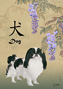 Japanese Chin Framed Prints - Dog Breeds Framed Print by IM Spadecaller