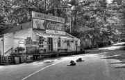 Rabbit Hash Metal Prints - Dog Day Afternoon bw Metal Print by Mel Steinhauer