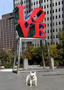 City Scenes Photos - Dog Love by Lisa  Phillips