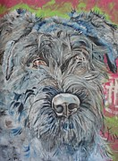 Vet Originals - DOG of FLANDERS the BOUVIER by PainterArtist FIN
