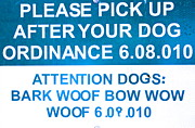 Dog Ordinance Print by Jeff Gater