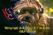 Dog Training Humans Print by Kathy Tarochione