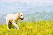 Dog Walking Digital Art - Dog walking by grass painting by Magomed Magomedagaev