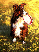 Dog At Play Posters - Dog with Frisbee Poster by Stephen Conroy