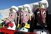Fries Posters - Doggie Diner Dogs - 5D20937 Poster by Wingsdomain Art and Photography