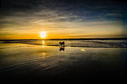 Lincoln City Photo Posters - Doggy Sunset Poster by Puget  Exposure