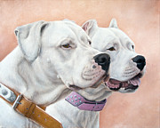 Dog Portrait Paintings - Dogo Argentino by Tobiasz Stefaniak