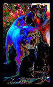 Souls Prints - Dogs In Heaven Print by Susanne Still