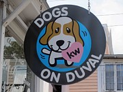 Key West Photographs Framed Prints - Dogs On Duval Framed Print by Fiona Kennard