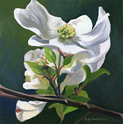 Dogwood Blossom Metal Prints - Dogwood Blossom Metal Print by Alecia Underhill