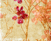 Pink Flower Prints Prints - Dogwood Print by Bonnie Bruno