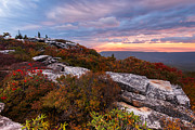Bear Rocks Prints - Dolly Sods October Sunrise Print by Joseph Rossbach
