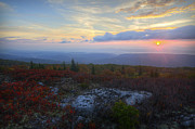 Michael Donahue - Dolly Sods Sunrise