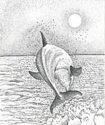 Brian Gilna - Dolphin 01