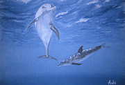 Nature Study Paintings - Dolphin Days 2 by Andre Pillay