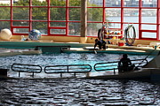 Harbor Art - Dolphin Show - National Aquarium in Baltimore MD - 1212107 by DC Photographer