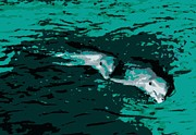 Silk Screen Print Prints - Dolphins Side By Side Print by Laurie Pike