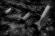 Fence Posts Photos - Domino Effect by Odd Jeppesen