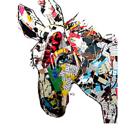Donkey Mixed Media Prints - Donkey  Print by Brian Buckley