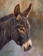 David Stribbling - Donkey
