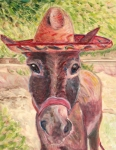 Art On Line Prints - Donkey named Lupe Print by Jodie  Scheller