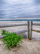 Split Rail Fence Photo Metal Prints - Dont Fence Me In Metal Print by Mark Miller