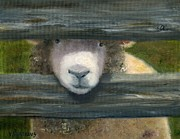 Sheep Prints - Dont Fence Me In Print by Vicky Watkins