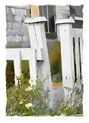 Shack Digital Art Prints - Dont Pick The Daisies Print by Bob Salo