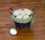 Affordable Kitchen Art Posters - Dont Put All Your Eggs In One Basket Poster by Kim Hojnacki