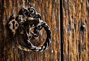 Entrance Door Framed Prints - Door Knocker Framed Print by Heather Applegate